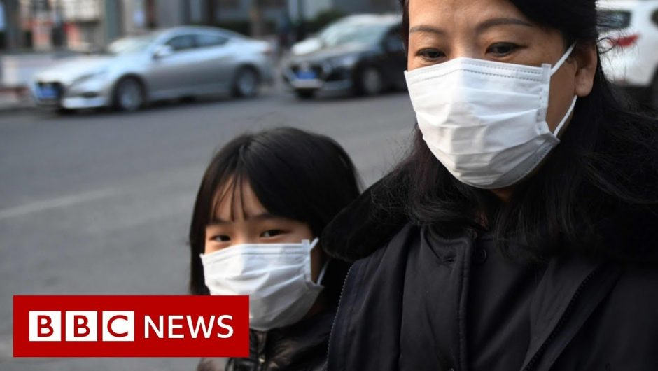 World battles coronavirus outbreak – BBC News