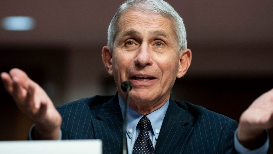 Fauci says Americans are 'in for a whole lot of hurt' with the COVID-19 surge