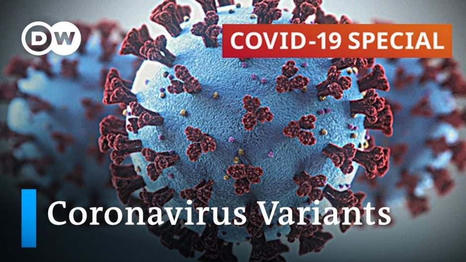How to stop the spread of new coronavirus variants?   COVID-19 Special