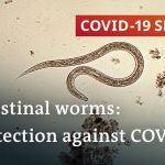 Coronavirus: Are parasitic worms responsible for low fatality rates in Africa?   COVID-19 Special