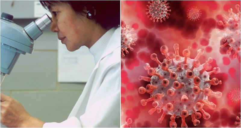 Japanese scientists develop radical new vaccine that could prevent future coronavirus pandemics